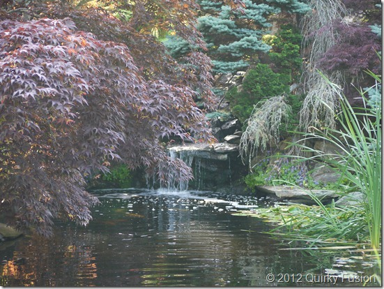 Pleasant Bay Village, Chatham, MA - Koi Pond