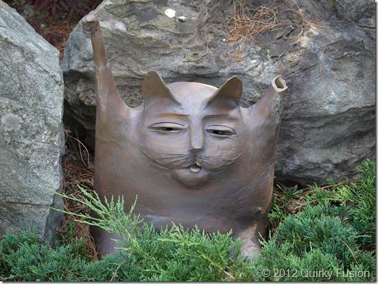 Pleasant Bay Village, Chatham, MA - Asian Cat