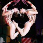 Cirque Dreams Holidaze Brings the Holiday Spirit to Boston – Review